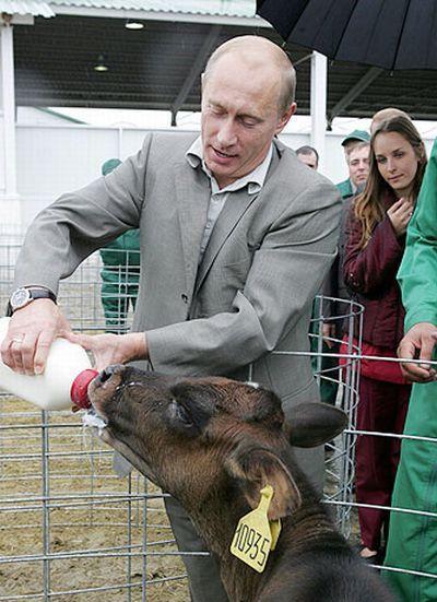 ШОК: Молодая телка сосет у Путина! (фото) Вообще-то, это заголовок в стиле